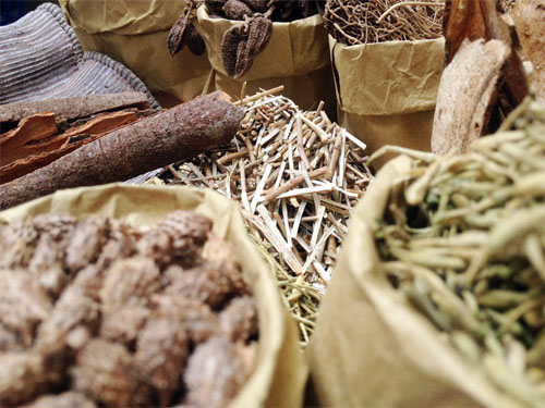 Cách chữa thoái hóa khớp gối bằng cây thuốc nam