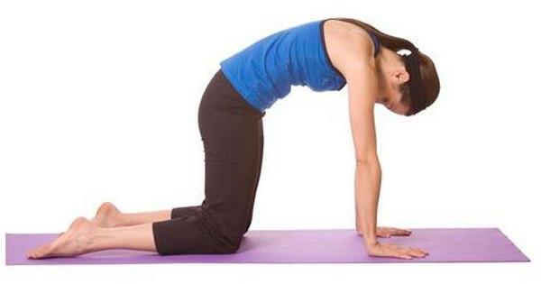 tập yoga chữa đau vai gáy với tư thế con mèo.jpg