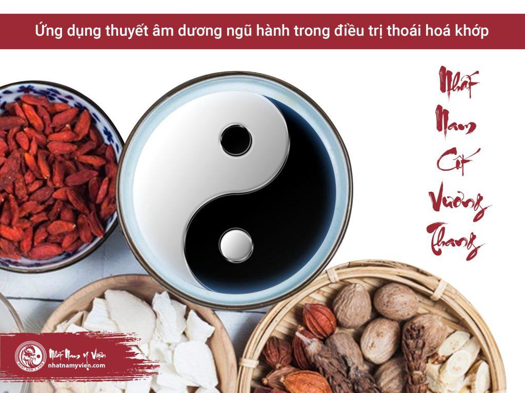 Nhất Nam Cốt Vương Thang điều trị bệnh xương khớp